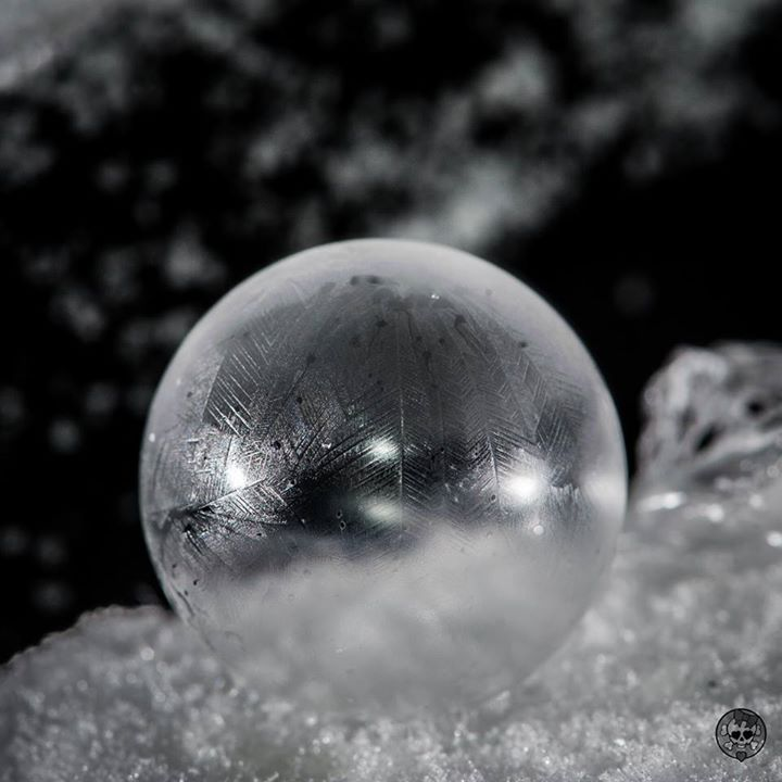 Frozen bubble. Photograph taken by Rachael Hill.